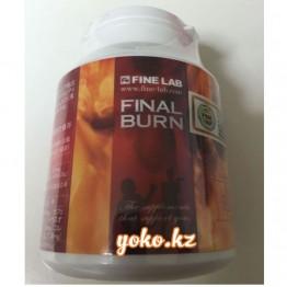 Сжигатель жира Final Burn №225