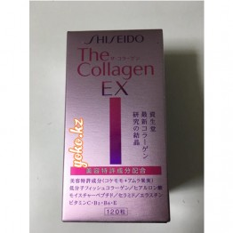 SHISEIDO The Collagen EX